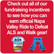 Fundraising Incentives 2014